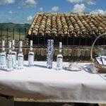 esdw-convegno - esposiione liquori all'anice verde di castignano