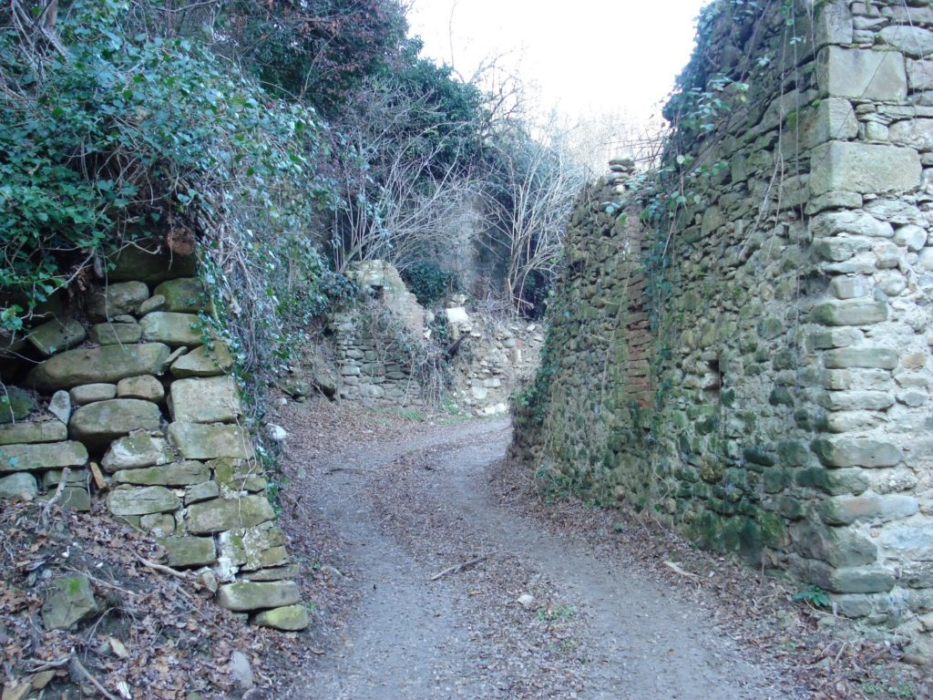 I ruderi del mulino da capo. A destra i resti del mulino, a sinistra la paratoia dell'invaso ancora quasi integra.