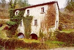 Lo storico mulino della famiglia Angelini in località Piedicava (Acquasanta Terme), ancora perfettamente funzionante (immagine tratta dal sito internet).